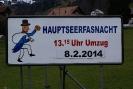 Hauptseerfasnacht vom 8.02.2014 002 (Large)